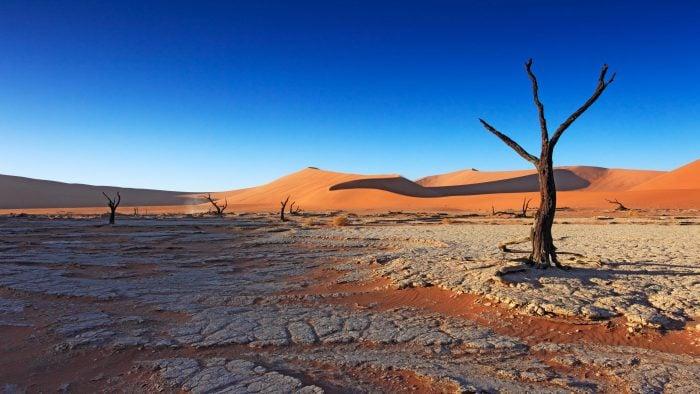 The vast Namibian desert.