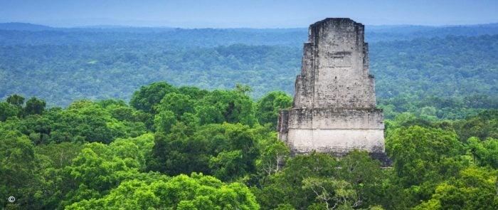 Canopy Tikal Guatemala