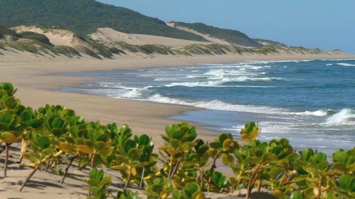 thonga-beach
