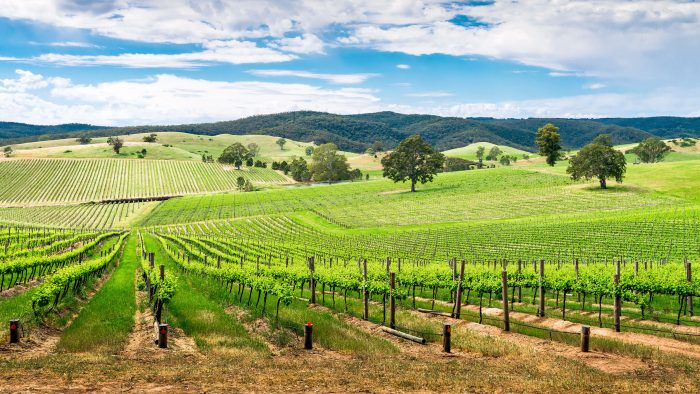 barossa-valley-australia