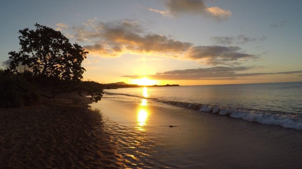 Floreana Island, Galapagos, Lily Bunker.