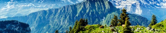bernese-oberland-valley