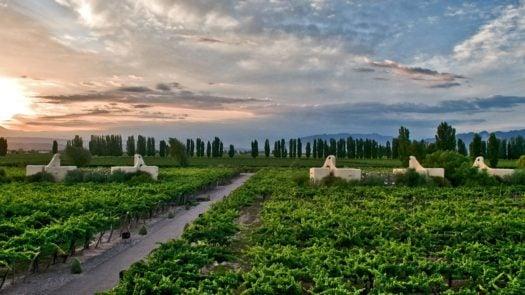 cavas-wine-lodge-mendoza-argentina
