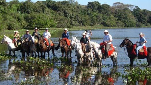 Horse Riding Barra Mansa The Pantanal Brazil