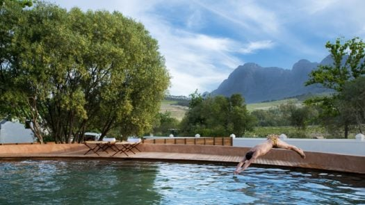 The pool at Babylonstoren, The Winelands, South Africa