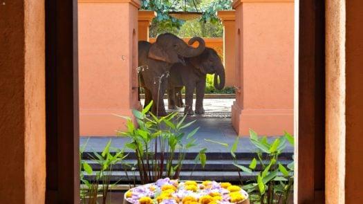 Les éléphants à l'entrée de la station, Anantara Golden Triangle, Chiang Rai, Thaïlande
