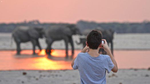 Imvelo-Safari-Lodges-Bomani-Tented-Lodge-Sunset-photography-at-Ngamo