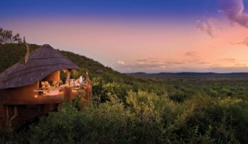 madikwe-game-reserve-south-africa