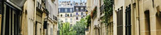 Paris Street Haussmann Seine