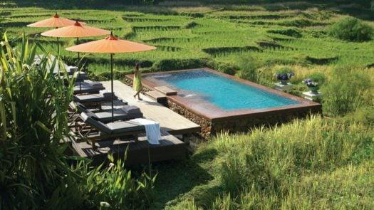 rice-fields-four-seasons-chiang-mai-thailand