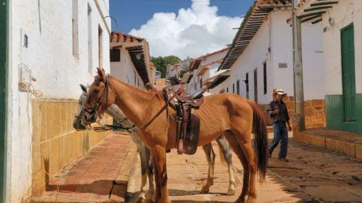 Barichara Colombia Horses