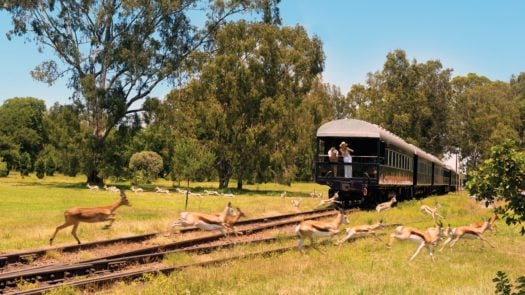 Rovos Rail Journey, South Africa