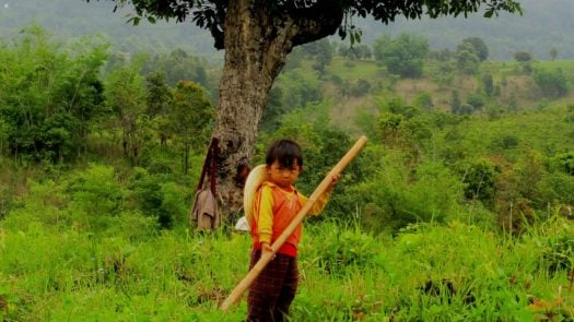 Young PaO Tribe Farmer, Inle Lake, Myanmar/Burma