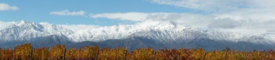 almaviva-vineyards-chile