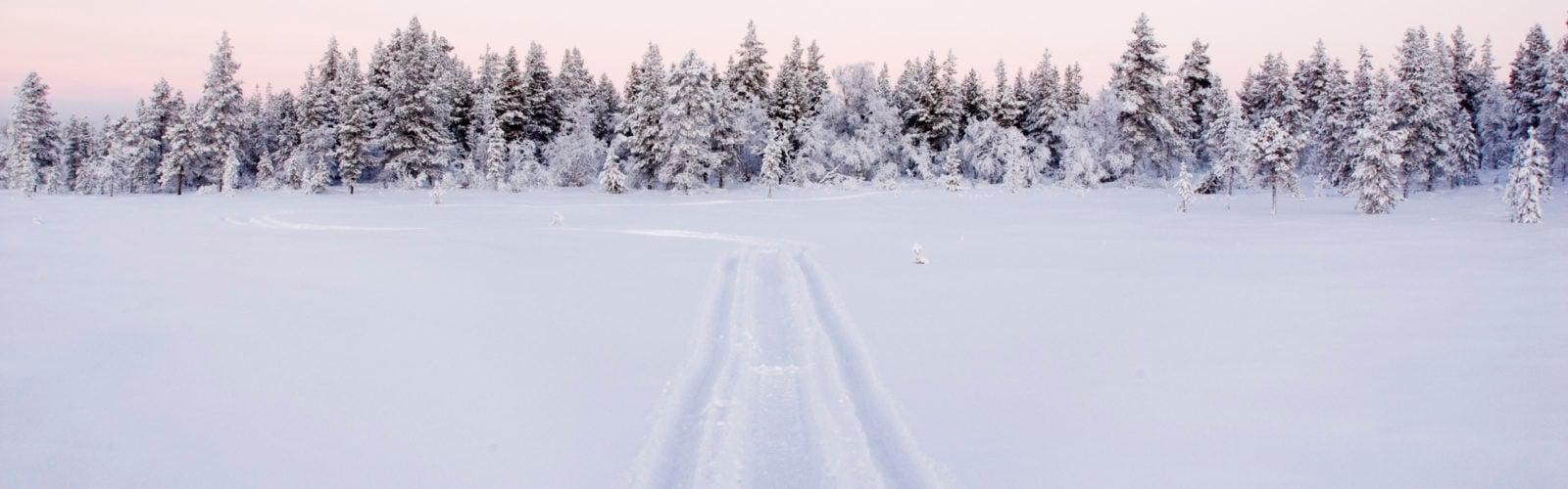 lapland-snowy-landscape