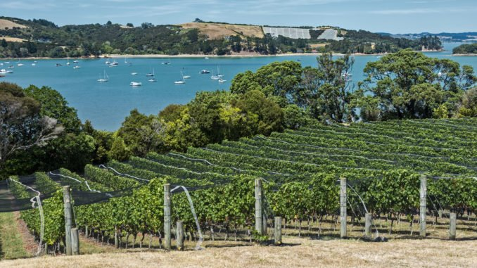 Waiheke Island Winery, New Zealand