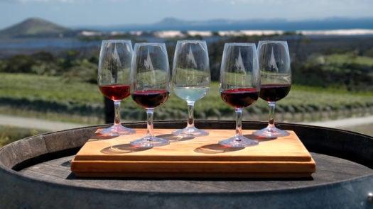 wine-tasting-new-zealand