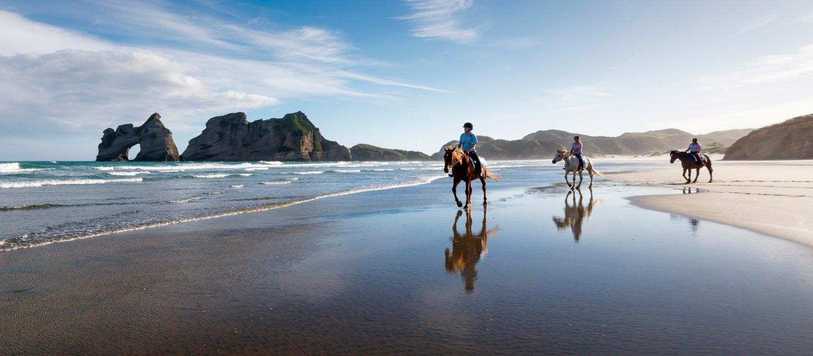 edenhouse-horse-riding-wharakiki-beach