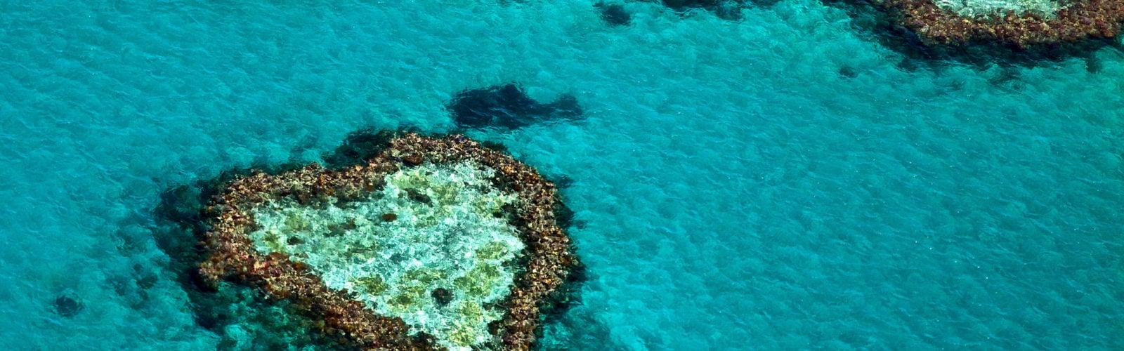 heart-reef-great-barrier-reef-whitsundays-australia