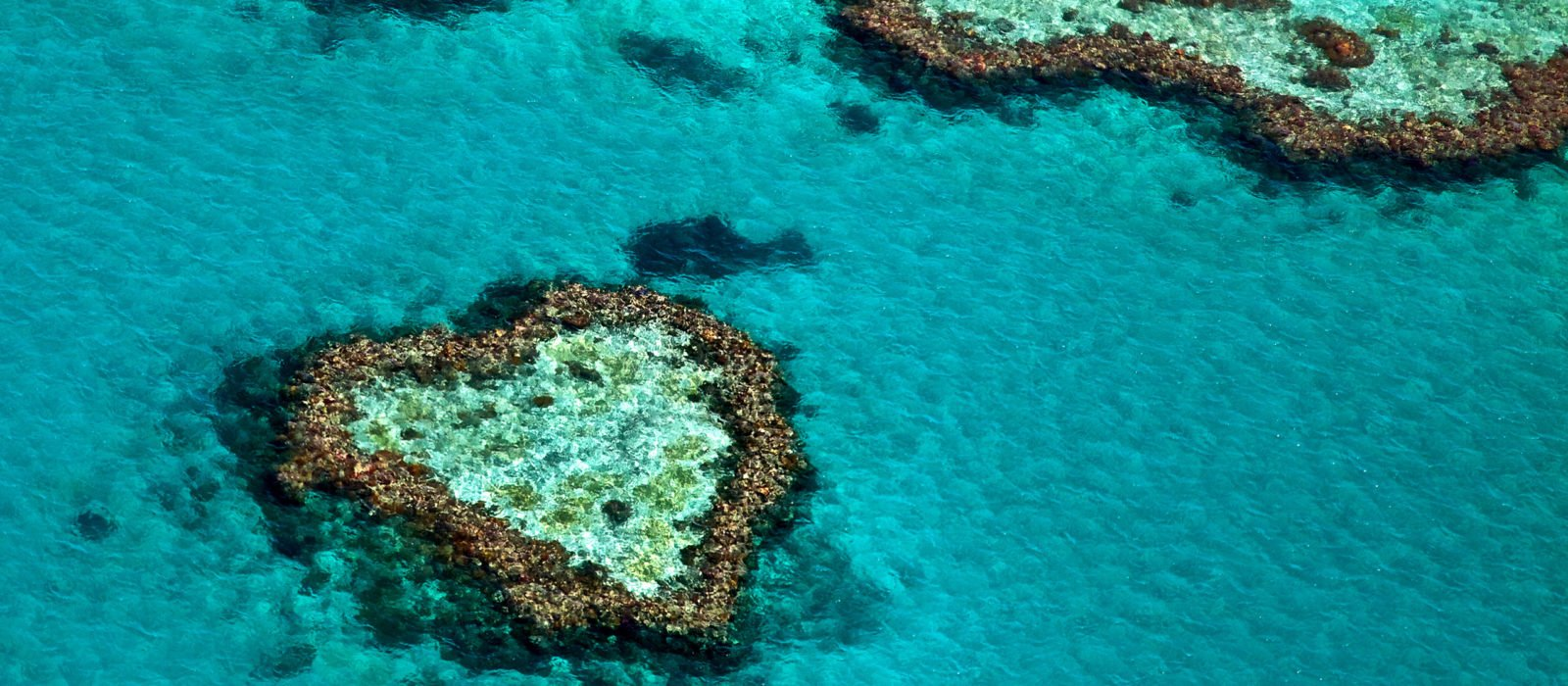 heart-reef-great-barrier-reef-whitsundays-australia