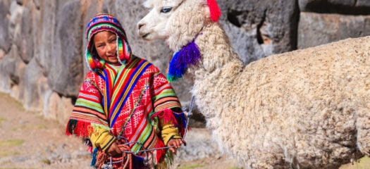 Peruvian little boy wearing national clothing with llama near Cuzco, Peru