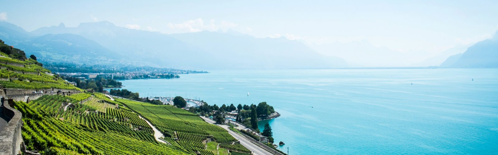 montreux-vineyards