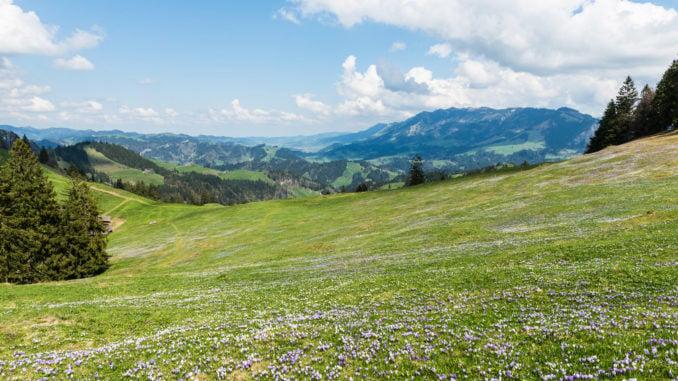 emmental-valley