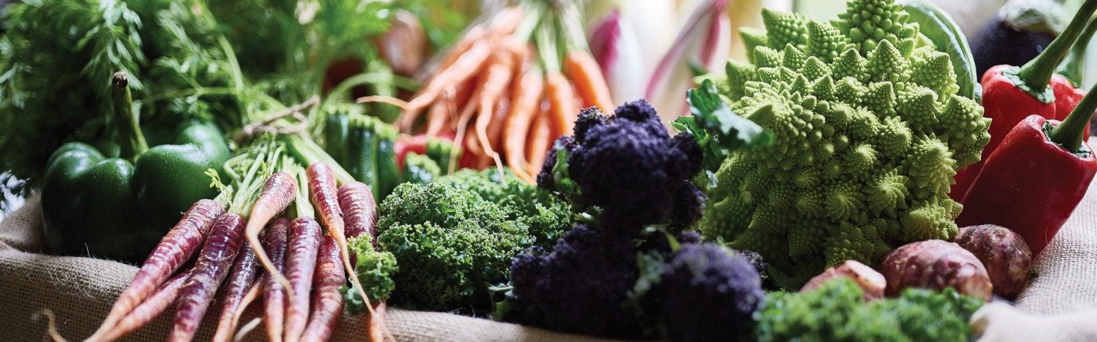 manoir-aux-quatre-saisons-veggies