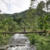 mahogany-springs-landscape