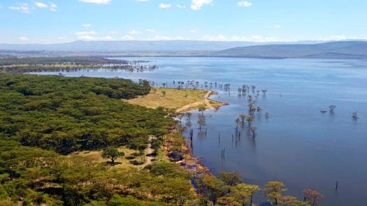Peaceful view on the lake Nakuru. Africa. Kenya