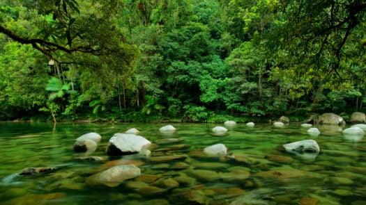 daintree-river-queensland-australia