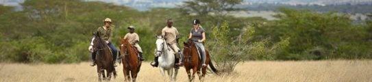 solio-lodge-horseriding