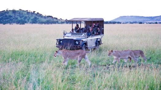 singita-mara-river-camp-safari