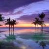 fusion-maia-pool-sunset