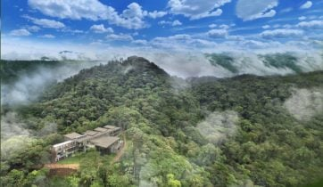 cloud-forest-ecuador-mashpi-lodge