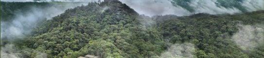 cloud-forest-ecuador-mashpi-lodge