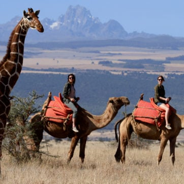 lewa-wilderness-camel-riding
