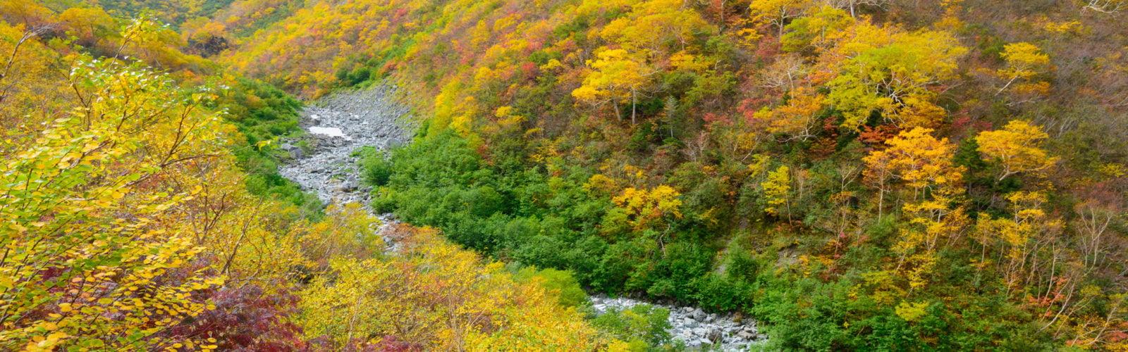 japanese-alps-scenery-autumn