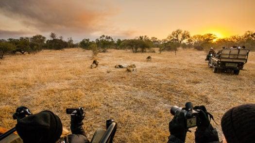 Sunset, Sabi Sabi Safari, South Africa