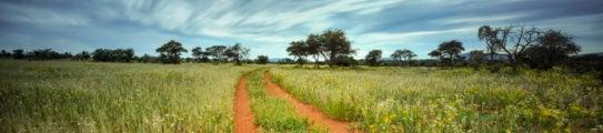 tswalu-kalahari-south-africa