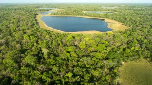 pantanal-aeria