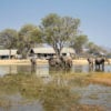 elephants-watering-hole-linkwasha-camp-zimbabwe