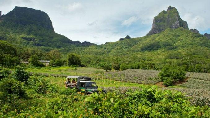 moorea-island-jeep-safari