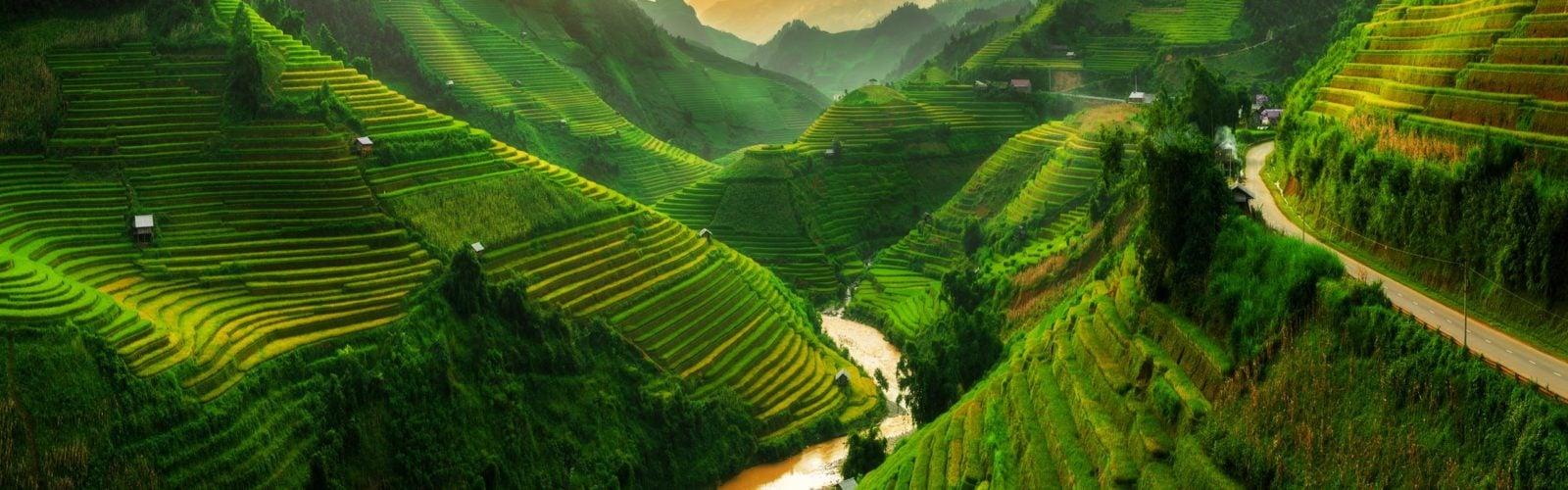 rice-field-mu-cang-chai-sapa-vietnam