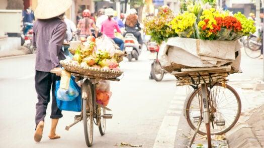 hanoi-flower-bike-vietnam