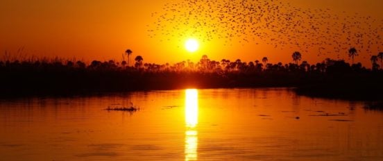 sunset-okavango-delta