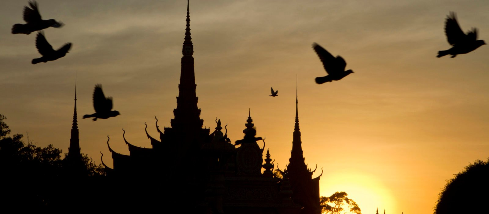 pigeons-phnom-penh-sunset