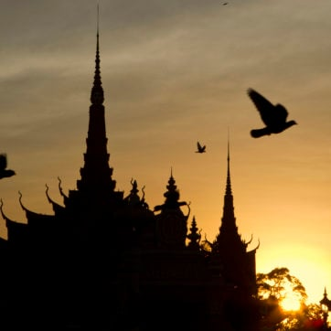 Pigeons flying over the Royal Palace in Phnom Penh, Cambodia