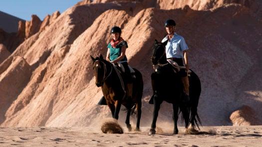 Horses, Tierra Atacama, the Atacama Desert, Chile