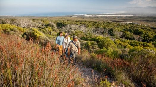 grootbos-reserve-whale-coast-south-africa